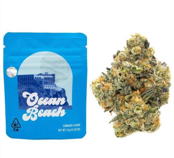 Ocean Beach Cookies